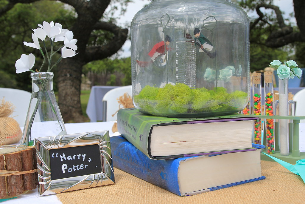 Harry Potter Wedding Table Centerpiece A Quidditch Scene F Flickr