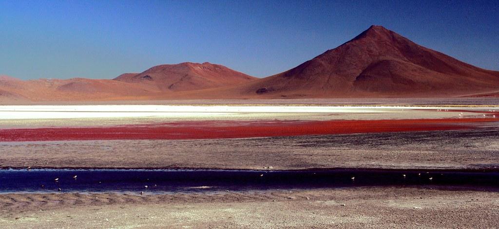 20071103 Laguna Colorada, Bolivia R013