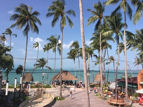 今日のサムイ島 3月4日 ボープットフィッシャーマンズビレッジ