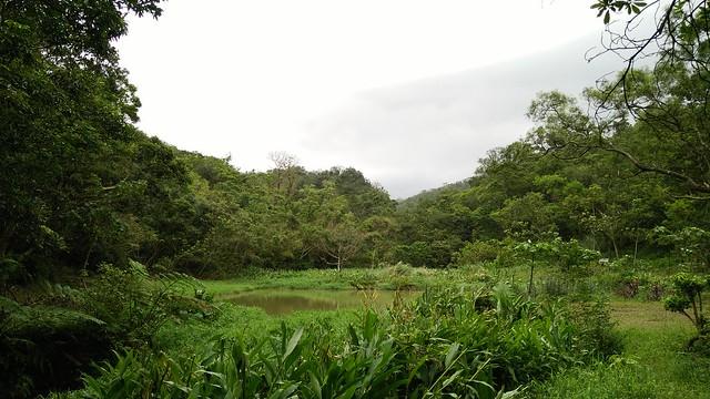 4.寧靜翠湖,群山環繞