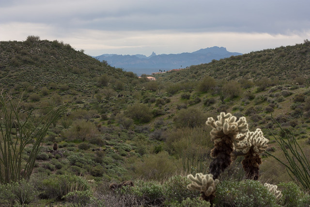 Arizona Landscape with Weaver's Needle in the distance