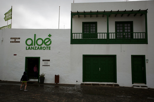 Teguise: museo dell'aloe