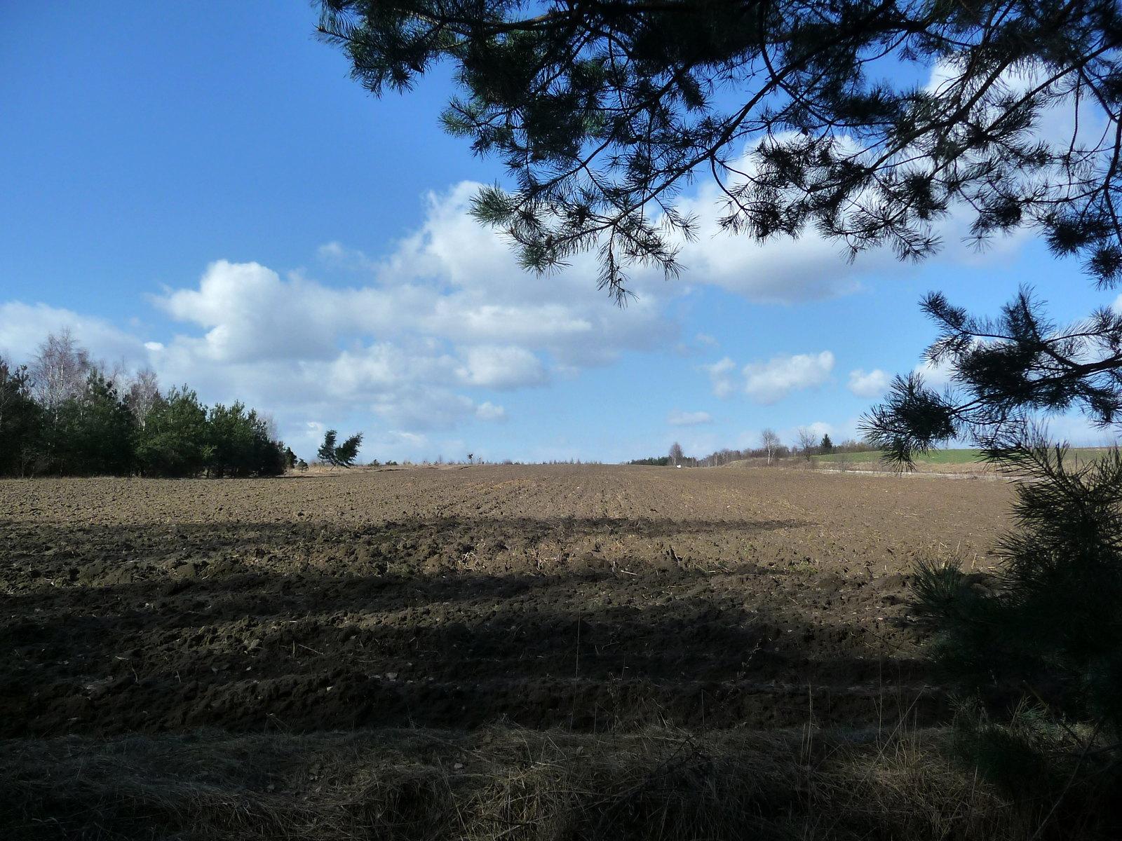okolice Dobieszkowa