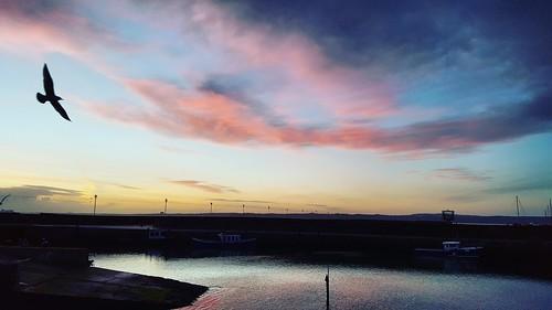 Carrickfergus Dawn