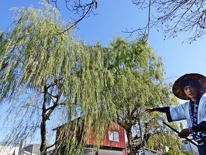 23日本九州自由行 日本威尼斯 柳川遊船  蒸籠鰻魚飯  みのう山荘-若竹屋酒造場