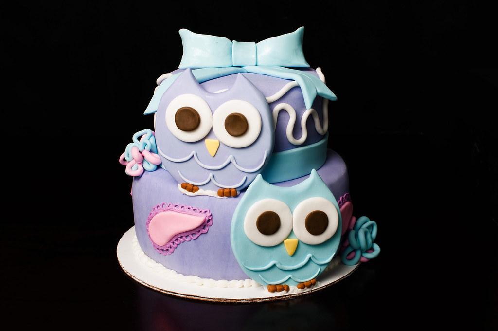 Cute Owl Themed First Birthday Cake Kayley Mackay Flickr
