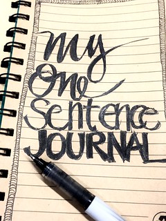 One sentence journal