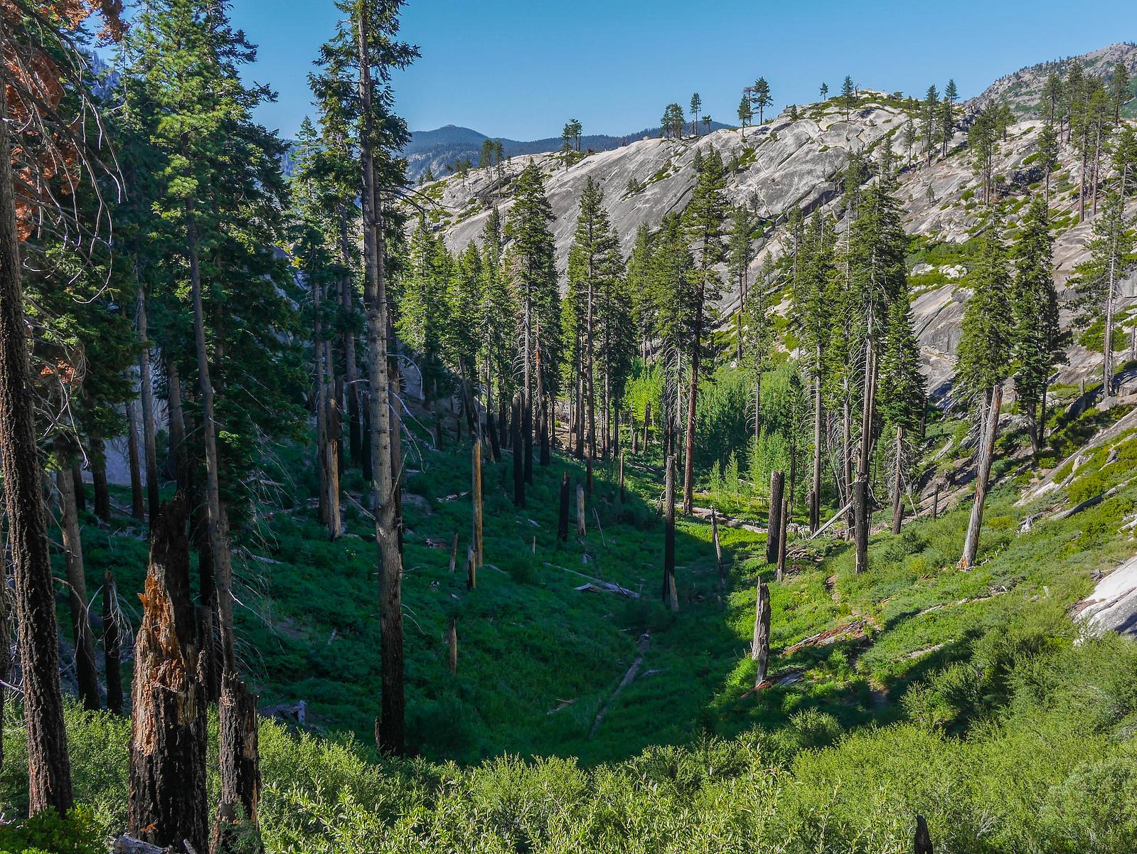 Heading down towards Crater Creek
