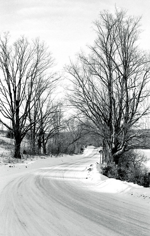 Winter on MacLaren Sideroad