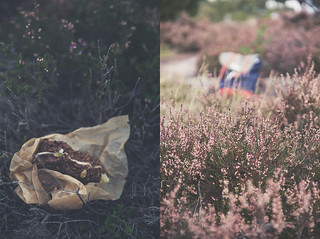 septemberhike_collage2 | by cashewkitchen
