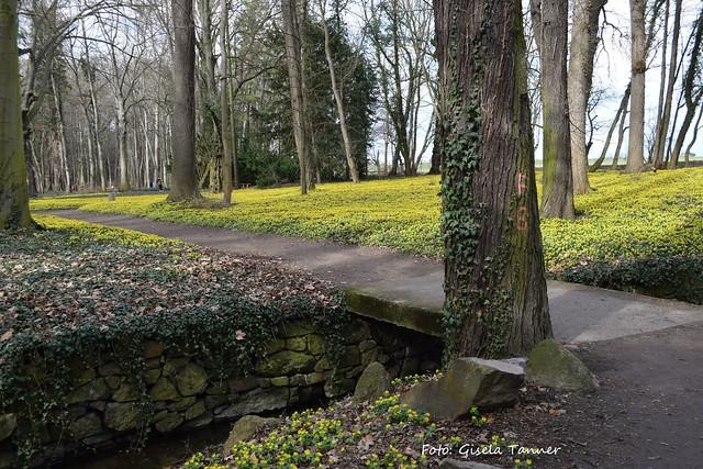 Wiederbesucht - Schlosspark Ostrau 2017