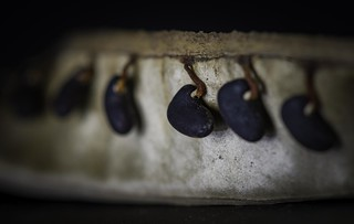 Seed | by Rodger_Evans