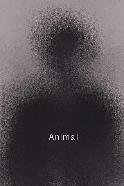 Pengcheng Chenの個展「Animal」を開催します