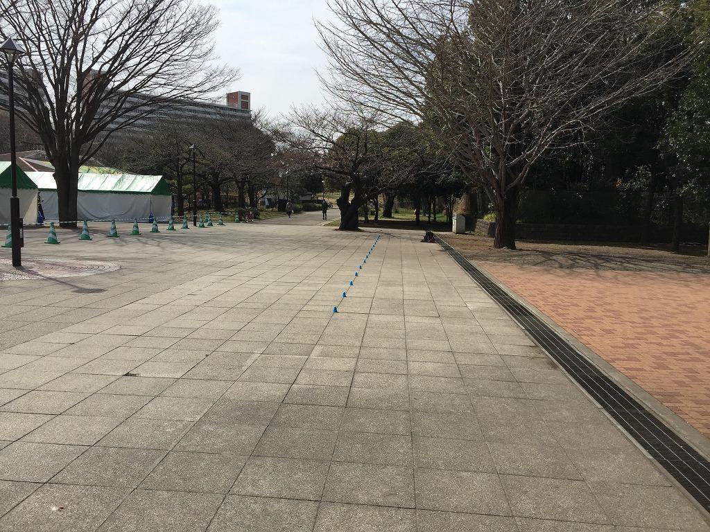 20170325_光が丘 (5)