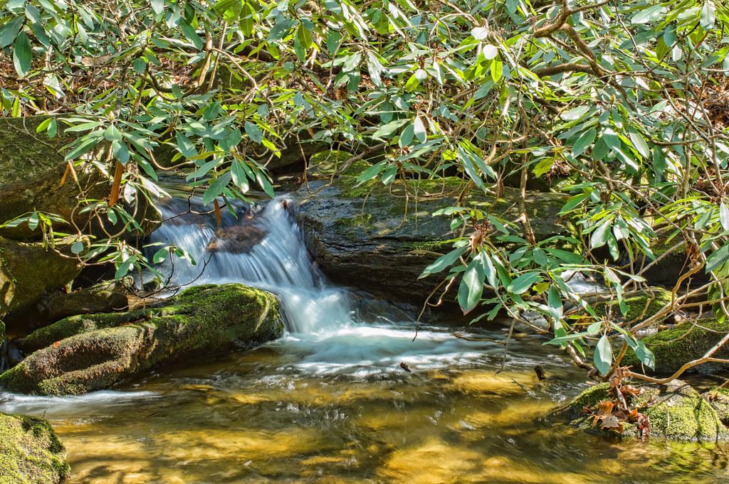 Micro Waterfall on Estatoe Creek
