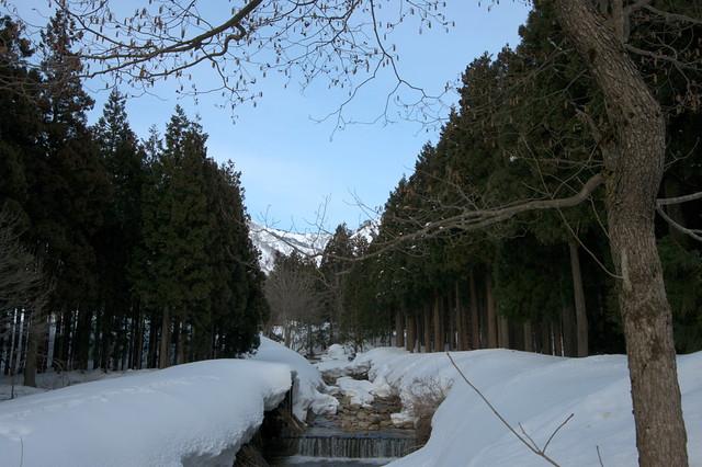 春先の渓流_201703