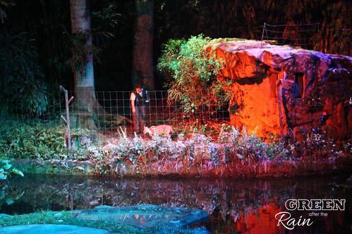 160912f Singapore Night Safari _093