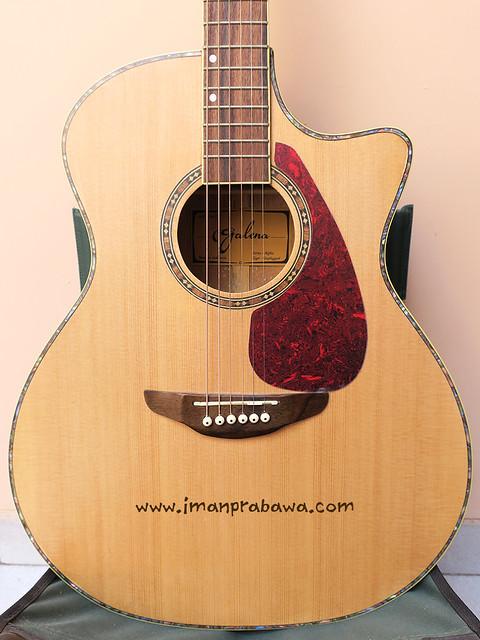 Gitar Galena 011