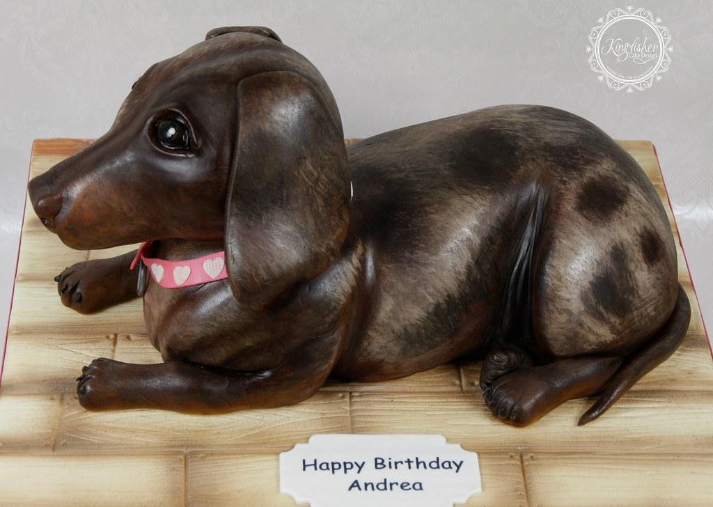 Dachshund Sausage Dog Cake A Chocolate Dapple Dachshund Flickr
