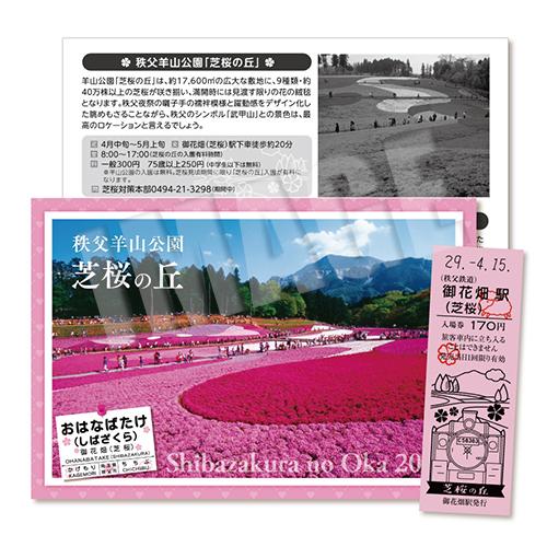 芝桜記念入場券