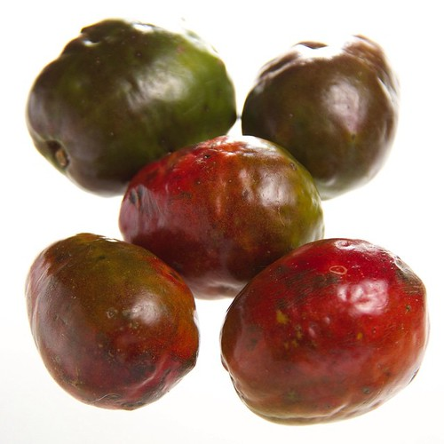 Jocote or Ciruela Roja or Spanish Plum or Red Mombin or Ho ...