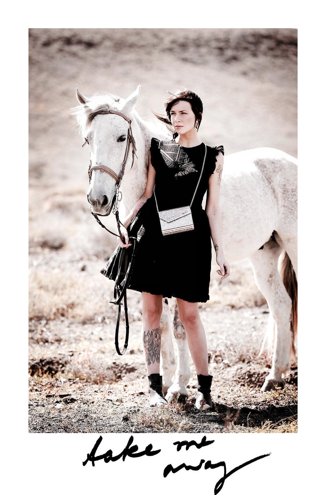 horse white desert jimmy choo glitter bag maje black cocktail dress cowgirl riding adventure freedom outfit ootd modeblogger breuninger fashionblog cats & dogs ricarda schernus düsseldorf 4