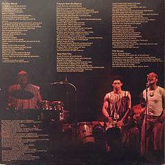 GIL SCOTT-HERON AND BRIAN JACKSON:IT'S YOUR WORLD(JACKET C)