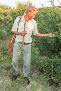 Kustom erklärt Sträucher und deren Bedeutung für San