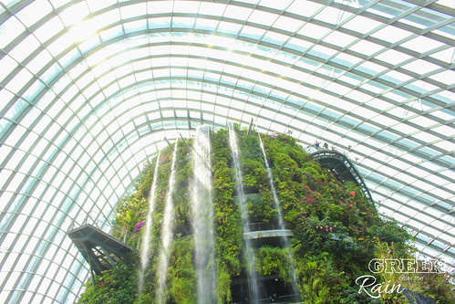 160909d Cloud Dome Gardens by the Bay _011