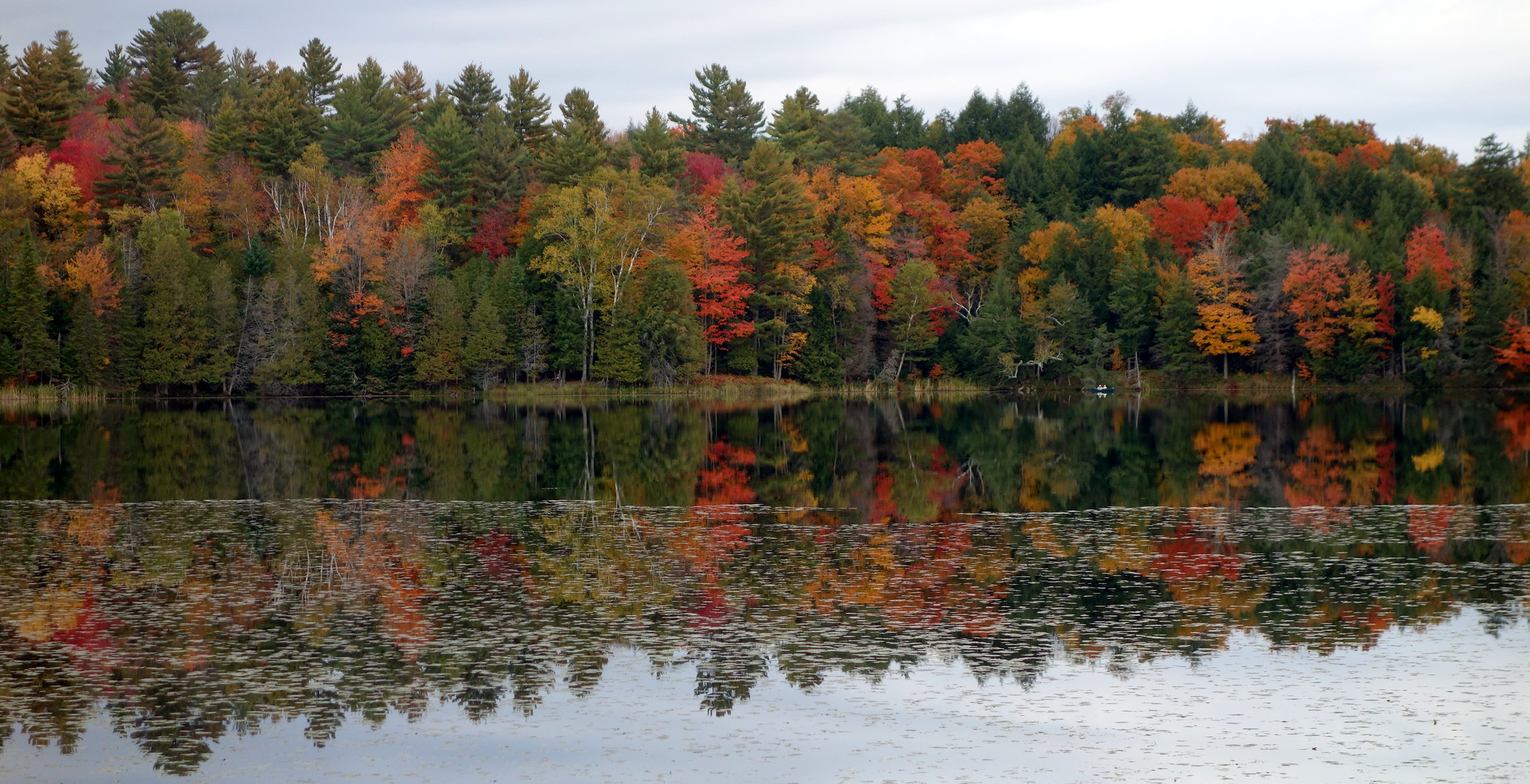 Bliss Pond, Calais, Vermont   by krisknow