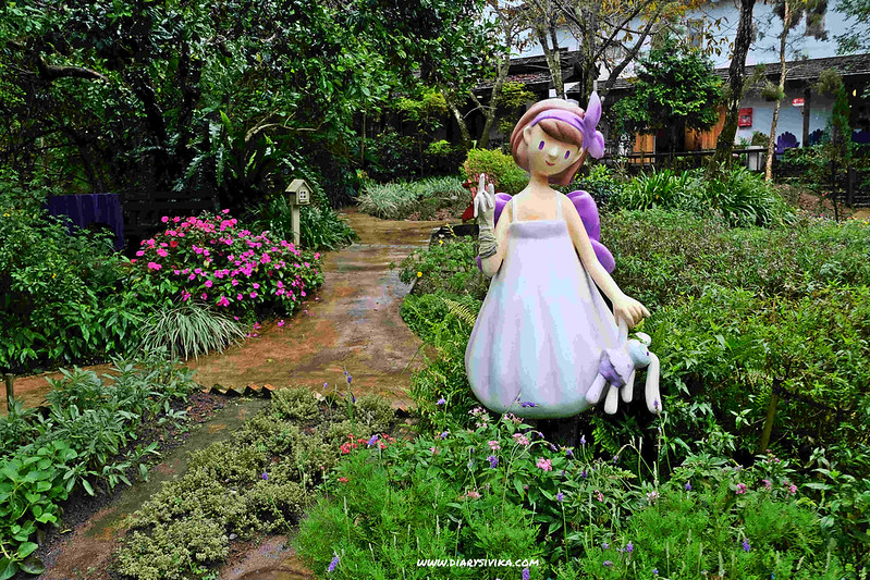 lavender cottage 9