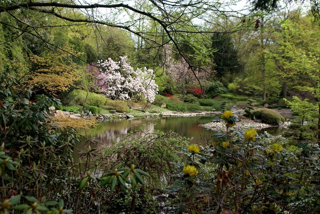 Un bout du jardin japonais de Wroclaw au printemps.