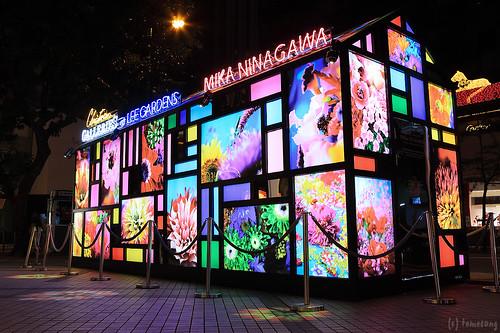 MIKA NINAGAWA Flower Kaleidoscope Tunnel