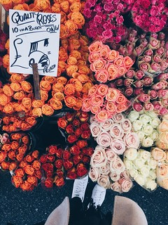 11 Dec 2016: Columbia Road Flower Market | London, England | by go.awaylobster.com