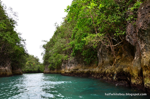 halfwhiteboy - bojo river cruise aloguinsan 16