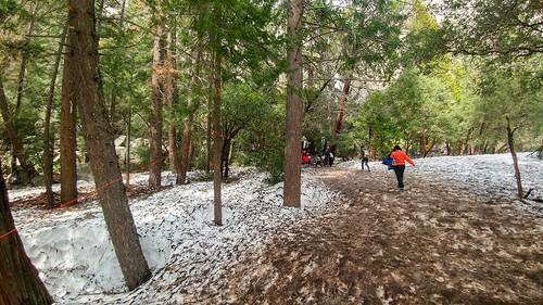 Snow at Yosemite Falls