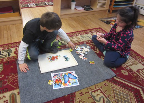 butterfly puzzle teamwork