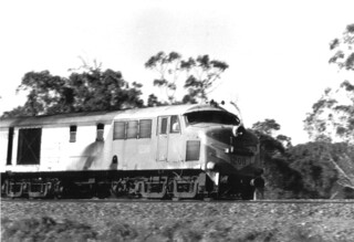 1208, Frenchs Forest 1981 | by QRIG.org Gallery Archive