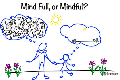 Mind Full v. Mindful