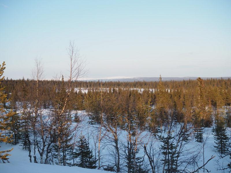 lumikenkäily maisema