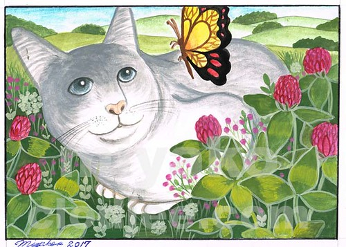 Cat with butterfly and clovers