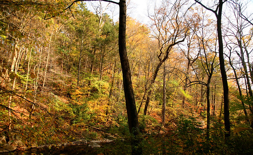 Wissahickon Valley Park 95 | by David OMalley