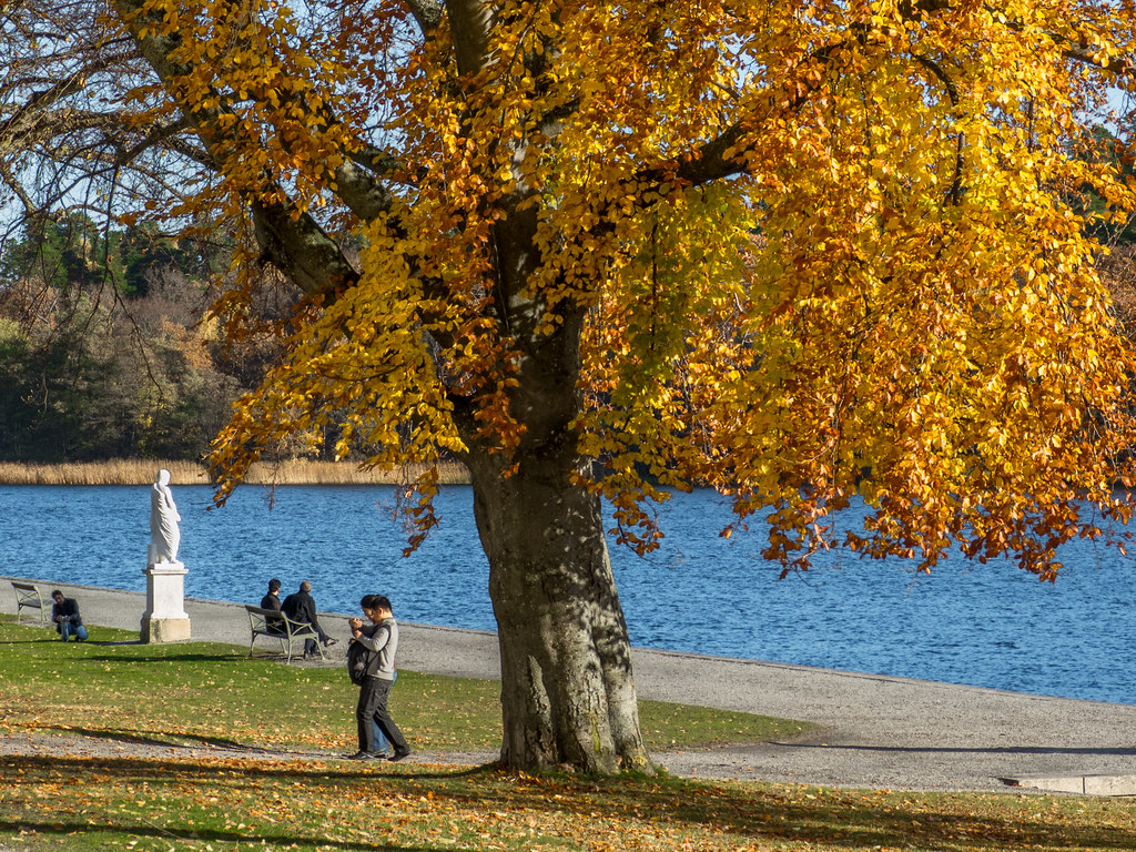 The English garden in autumn, Drottningholm Palace, Stockh… | Flickr