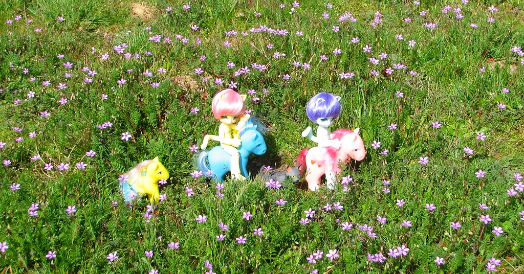 Mes BJD: balade sur petits poneys P21 - Page 21 32883283914_0954c39208_b