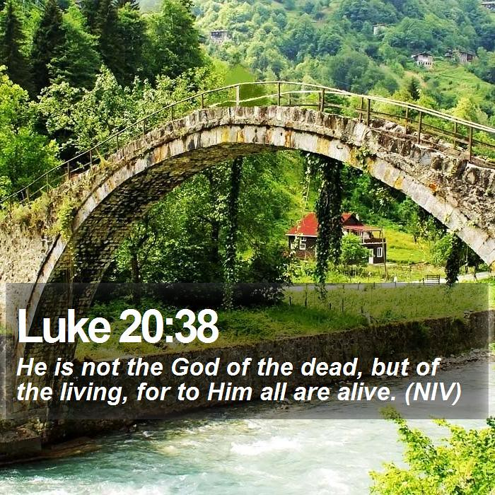 Kuvahaun tulos haulle Luke 20:38
