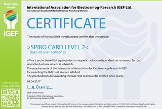 IGEF-Zertifikat-BSP2-EN