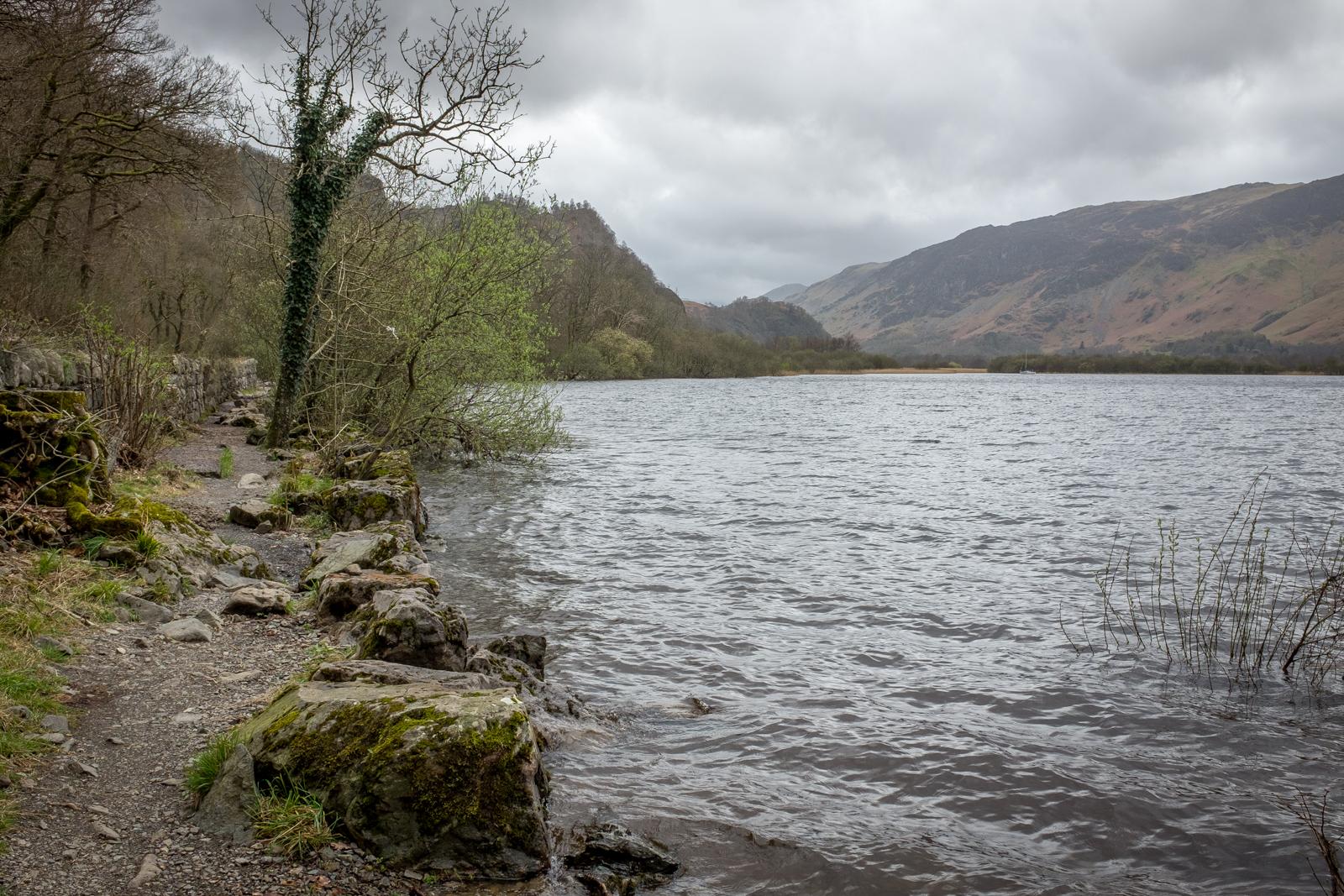 Derwent Water alongside Strutta Wood