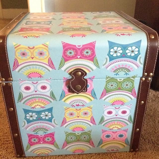 ... I Found This Adorable #owl #storage #trunk For My Daughters #bedroom  Today