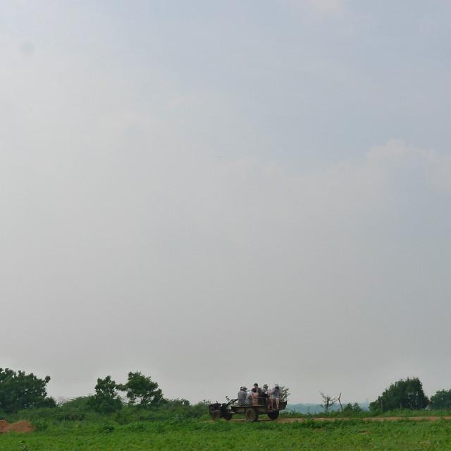 272-plantation