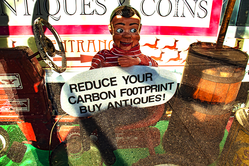 REDUCE YOUR CARBON FOOTPRINT--Ann Arbor